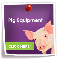 Pig Equipment Suppliers