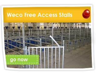 Weco Free Access Stalls